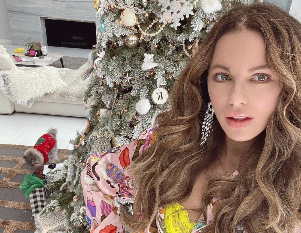 凱特貝琴薩和貓兒一起過耶誕。圖/摘自Instagram