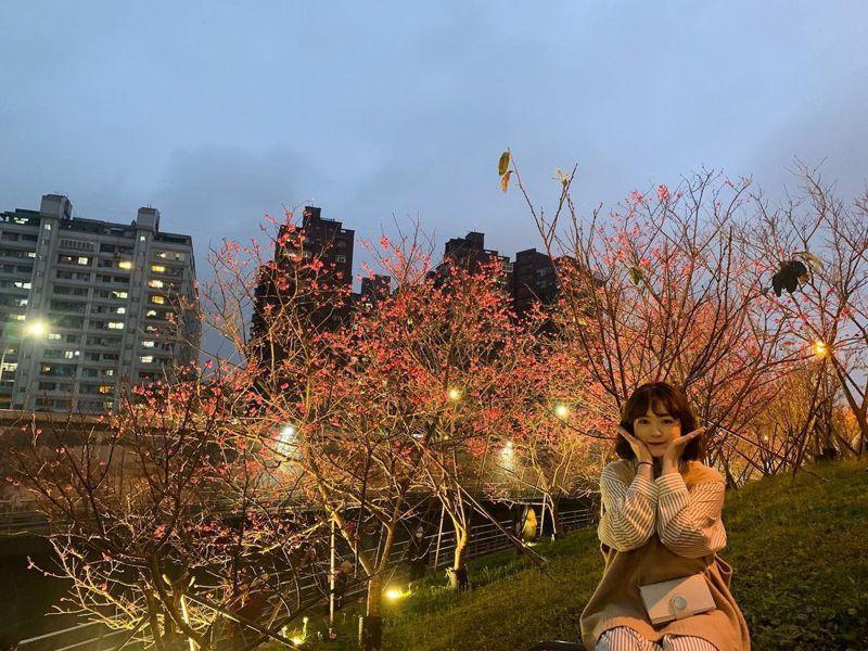 ▲全台櫻花季賞櫻景點推薦-樂活公園。(圖/minnie06013, Instagram)