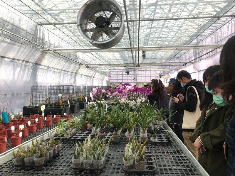 長榮大學蘭花教學溫室開幕,學生就在校內實習打造就業力。圖/校方提供