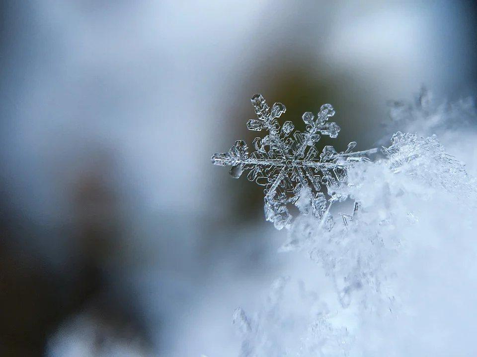 冬季,尤其是「1月份」,是冬季心肌梗塞死亡最高的月份。 圖/pixabay