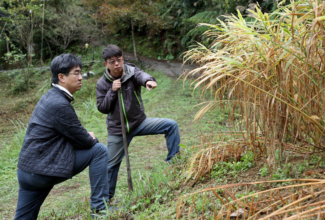 徐仲(左)走訪新竹農家,向薑農交流食材想法。記者余承翰/攝影