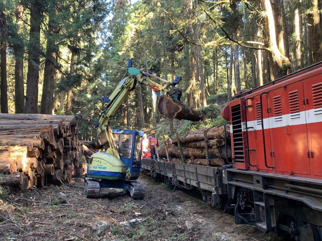 阿里山國家森林遊樂區內的水山線林鐵火車,協助運送木材。圖/嘉義林區管理處提供
