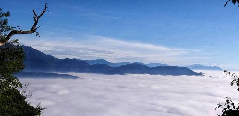 大雪山雲海。圖/東勢林區管理處提供