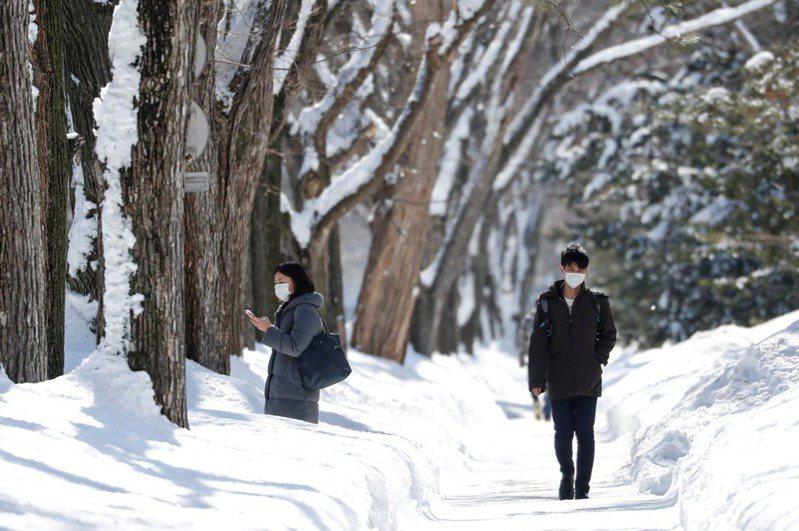 圖為本月15日冰雪覆蓋的北海道札幌街頭。路透社