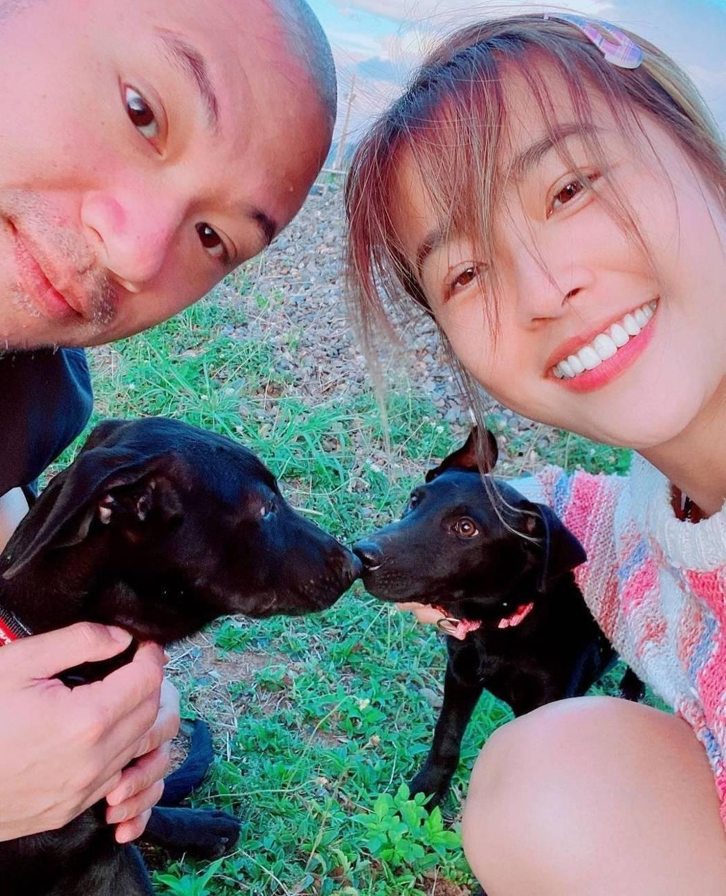金剛和小嫻日前收養了小狗。圖/摘自IG