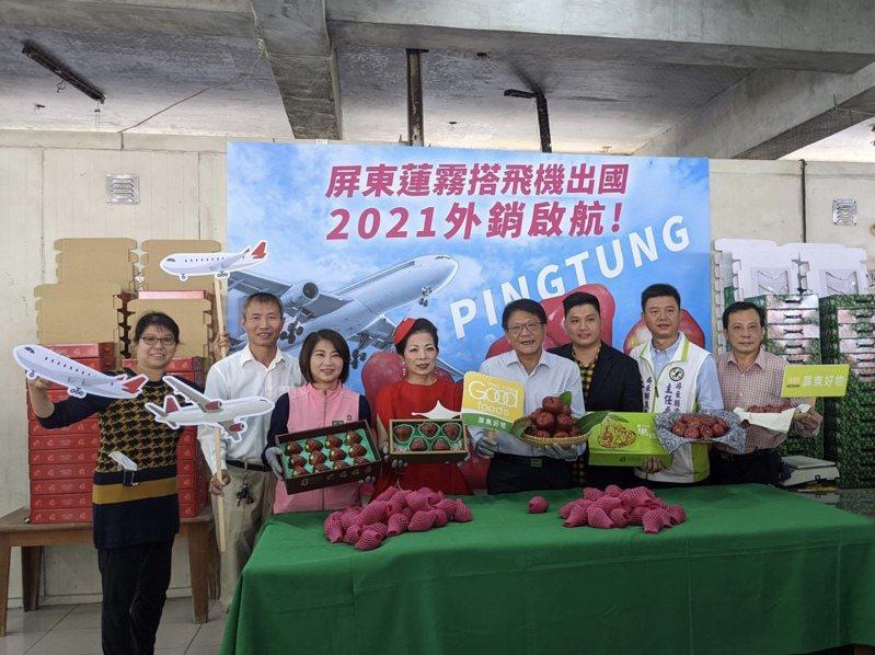 屏東縣政府、佳冬鄉農會以及外銷商今天上午集貨約200公斤,準備在新年度外銷香港。記者陳弘逸/攝影