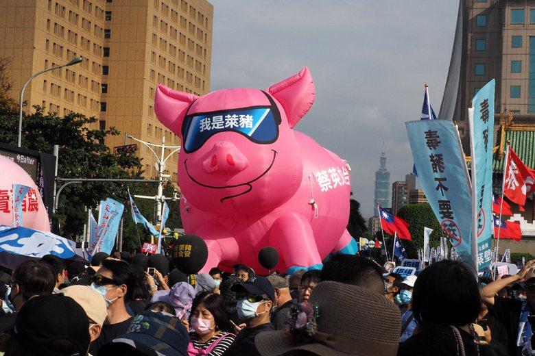 萊豬開放進口行政命令於今年1月1日生效,地方也以自治條例加以反制,讓中央與地方的衝突白熱化。 圖/歐新社