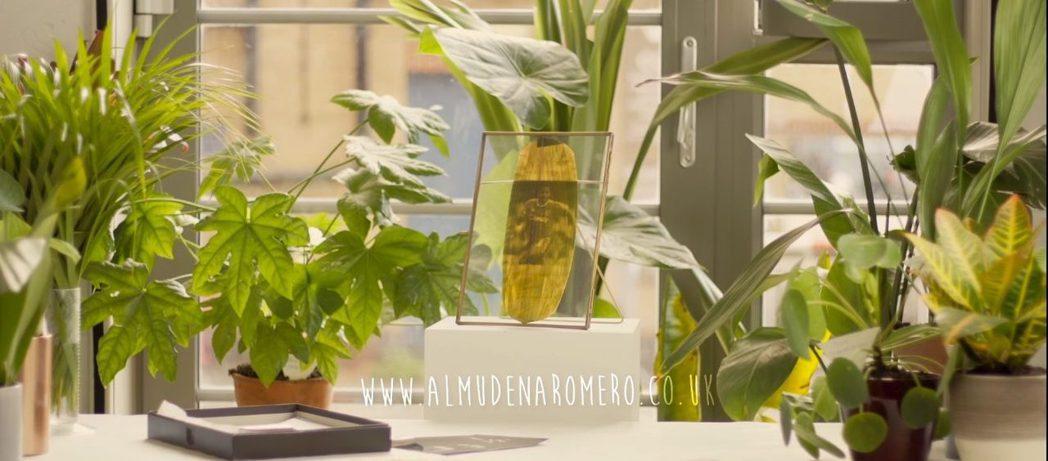 Almudena Romero以植物葉片,印上人物照片,喚醒大家對當今全球情勢的...
