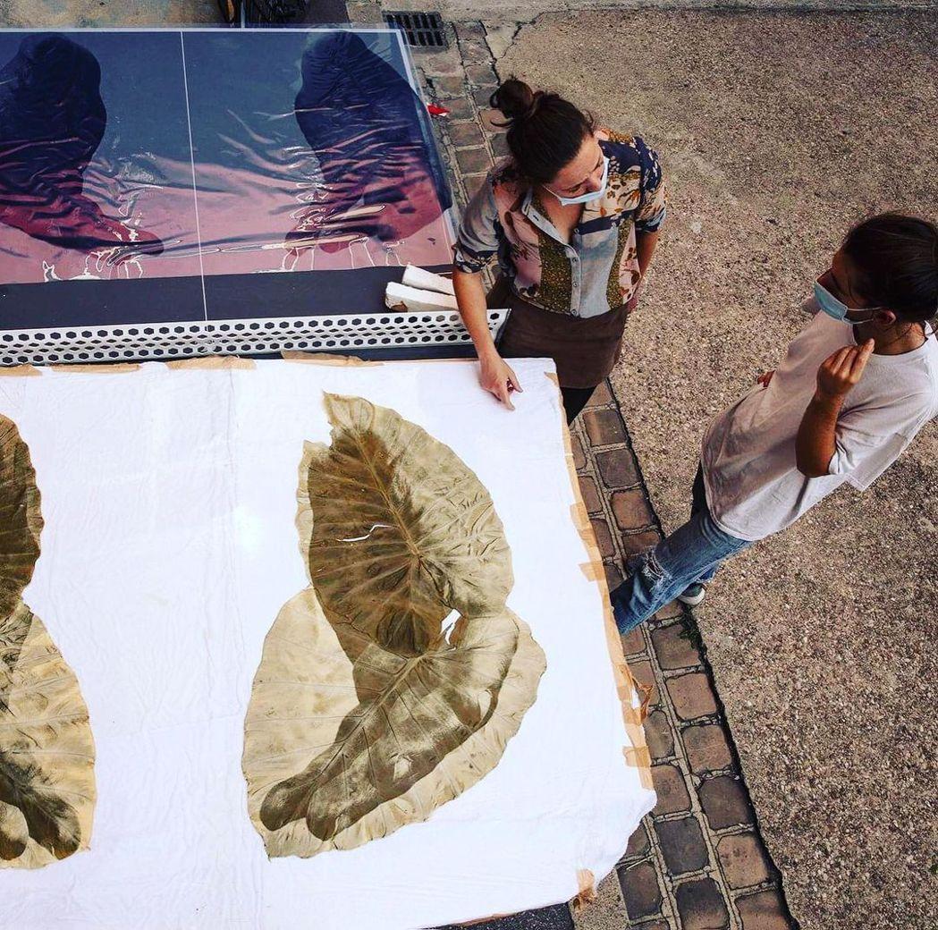 Almudena Romero以英國曾殖民地區的植物葉片,印上歷史情境與人物照片...