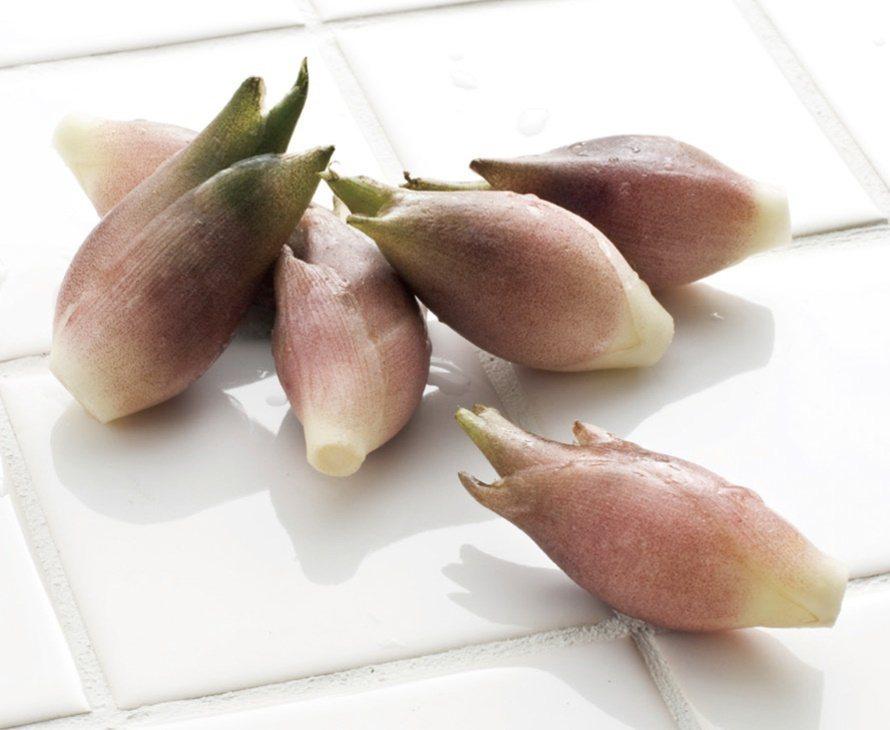 茗荷,薑的種類之一,只要種植一次,3~4年間不需多費力即能採收,是非常便利的辛香...