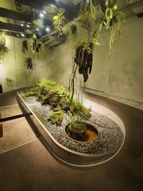 「VG Encore」餐廳門口特別營造了一個溫室般的高濕度綠化空間。圖/Pera...