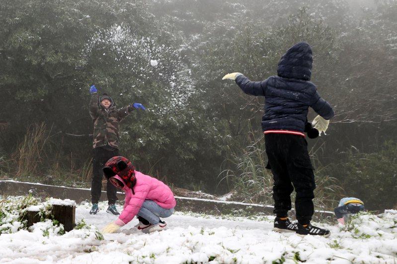 陽明山凌晨下雪,吸引數百民眾上山賞雪,小朋友在雪中丟雪球,開心極了。圖非新聞當事人。記者蘇健忠/攝影