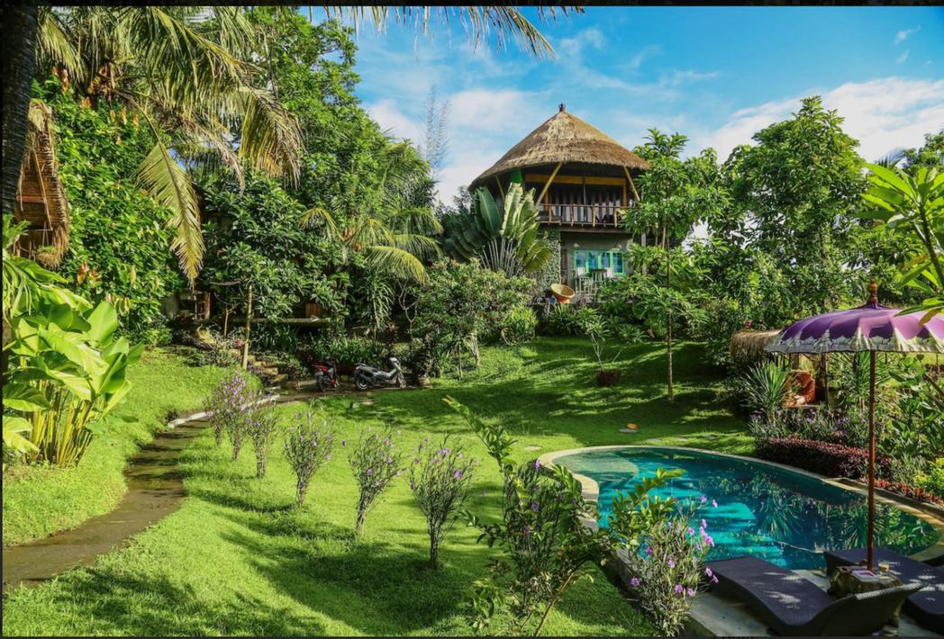 峇里林間私人樹屋。 Airbnb /提供