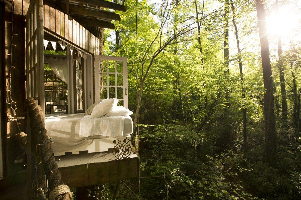 美國喬治亞州清幽夢幻樹屋。 Airbnb /提供