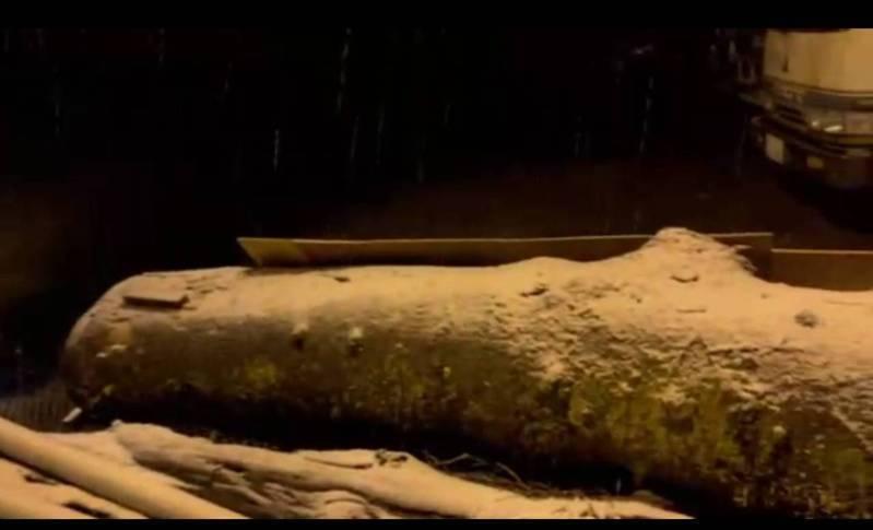宜蘭大同鄉四季村,今晚間降下瑞雪,目前大雪仍在持續中。圖/讀者提供