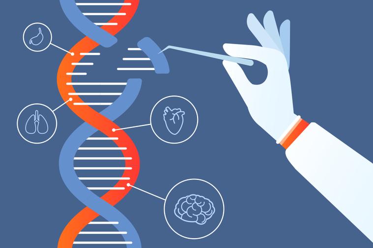 DNA並非命運註定,而是常常相互抵消的「好」和「壞」變異的結合。 圖/ingim...