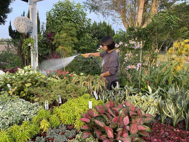 園藝治療在歐美等國家被認為有助於使人放鬆、平復情緒、減緩焦慮及疲勞等狀態,並廣泛運用在輔助治療、學校教育等範圍。記者陳雅玲/攝影