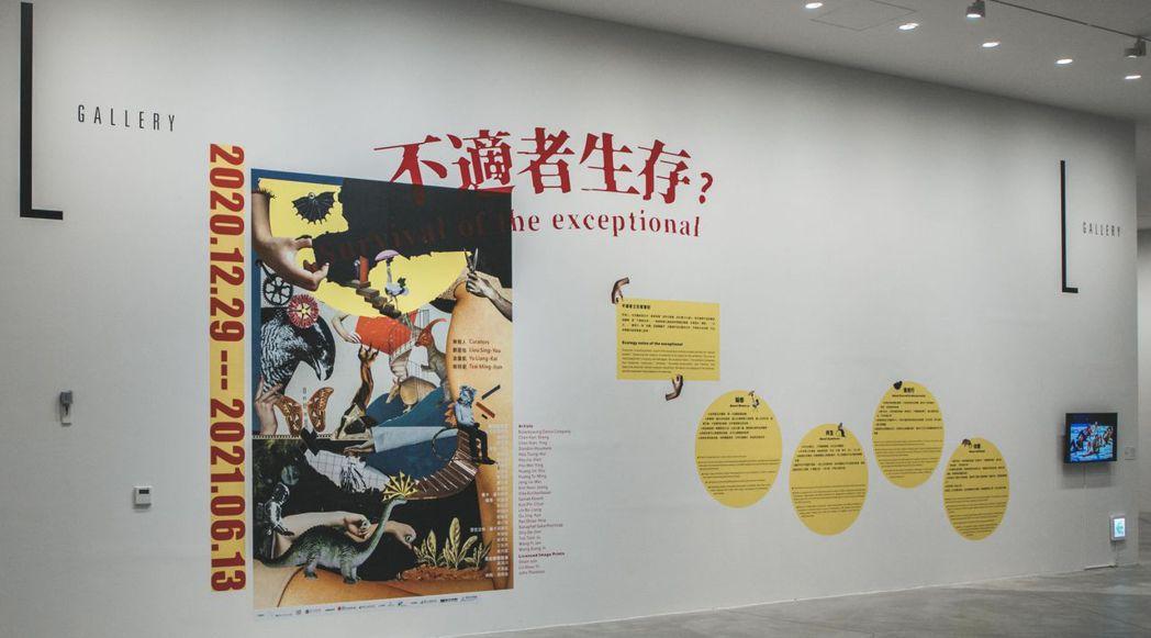 南美館推出新展「不適者生存?」,探討當代社會與文化的關係。  南美館/ 提供