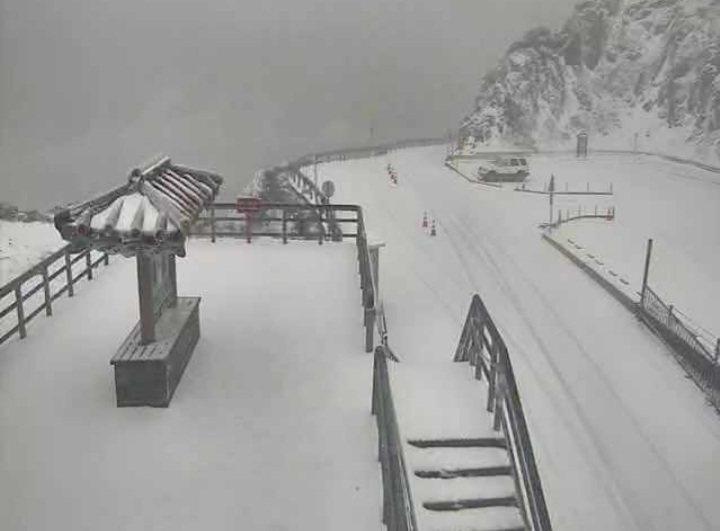 合歡山今又降雪,武嶺雪白一片。圖/讀者提供