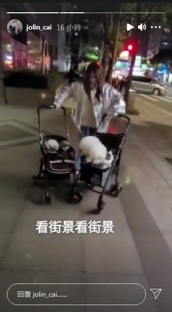 蔡依林外出遛狗沒人認出來。圖 / 擷自IG