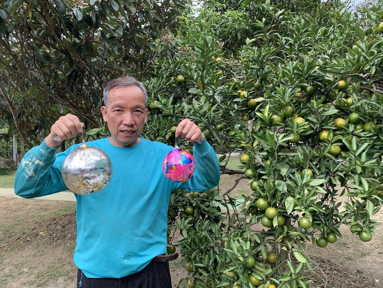 受新冠肺炎疫情影響,謝文增將工作室搬回老家新竹縣關西,並與太太一起經營休閒果園。...