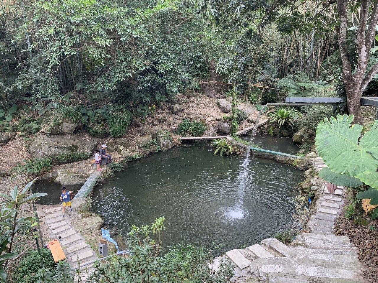 果園除了種水果,還有魚池引用天然泉水養殖的草魚、吳郭魚,可讓遊客盡情釣魚。 圖/...