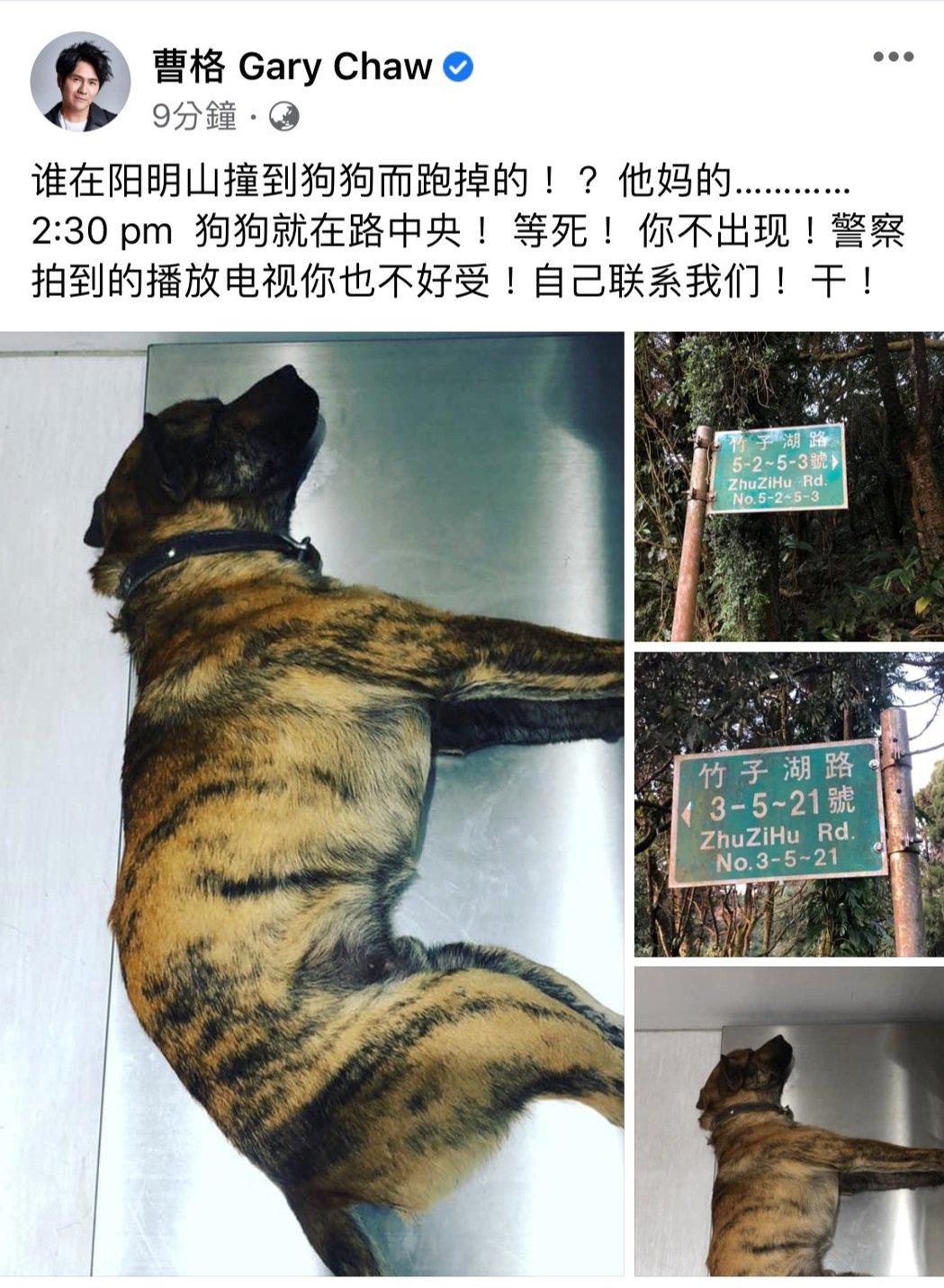 曹格不滿肇事者撞到狗狗後將狗狗棄之不理。圖/摘自臉書