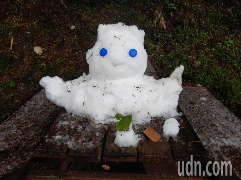 連續3波冷氣團,台灣部分高山成雪白世界,海拔2320公尺的台東向陽森林遊樂區,有1隻「雪人」從9日起堆起至今仍不融化,創下向陽山最久雪人紀錄。記者尤聰光/攝影
