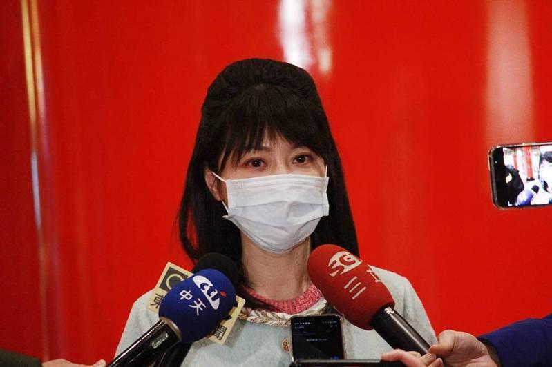 民進黨立委高嘉瑜。記者劉宛琳/攝影