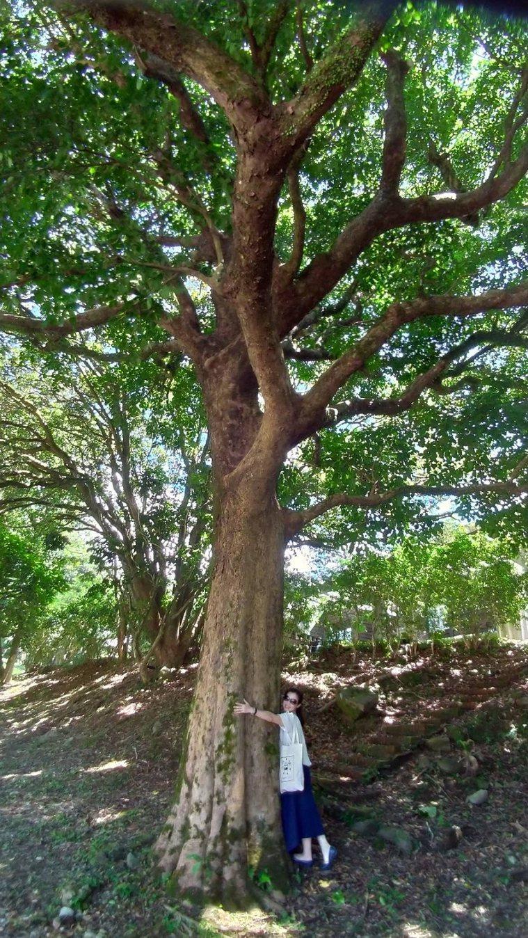 熱愛散步或是到近郊健行的彭樹君,從大自然中也獲得滿滿能量。 圖/取自50+(Fi...