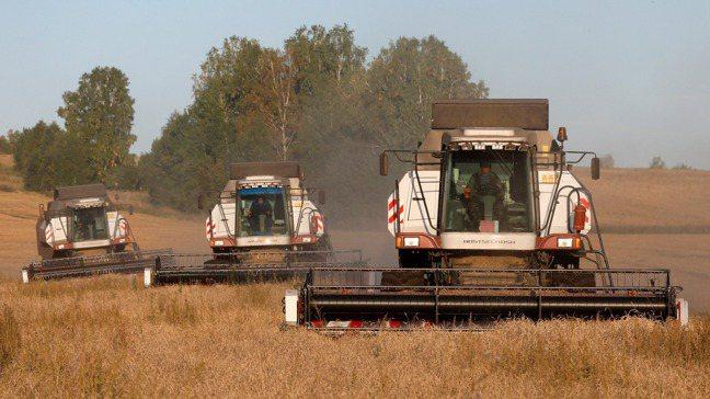 由於飼料、存糧、豬隻增加以及加工業者的需求激增,大陸玉米及食用黃豆期貨價創新高。...
