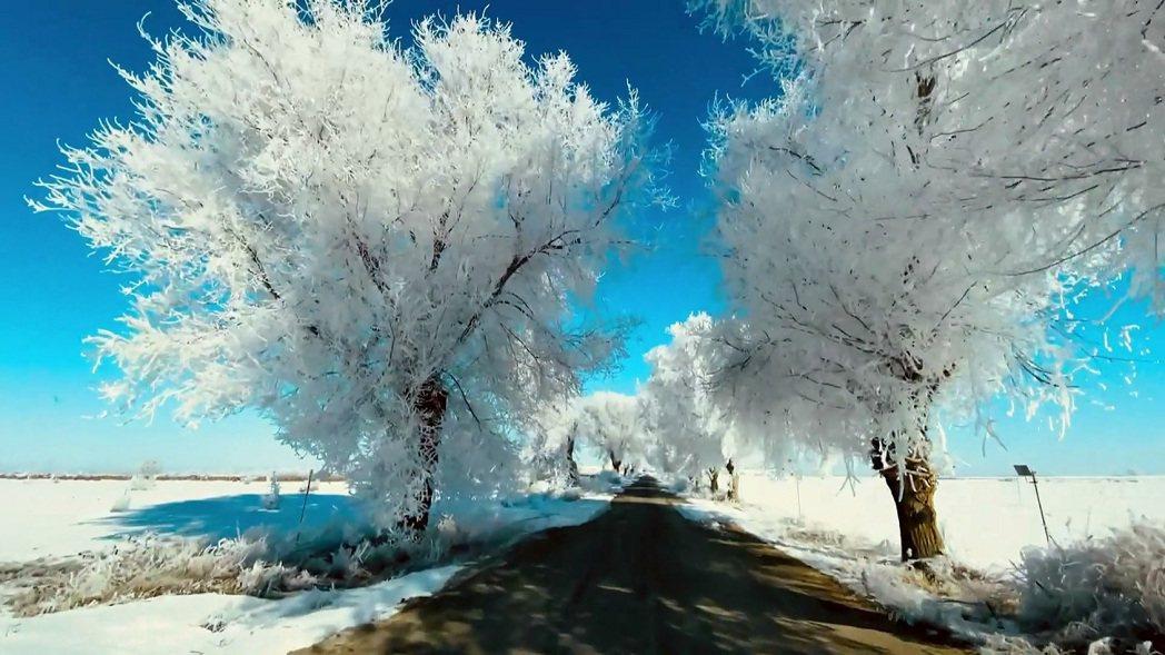 西班牙中部與東部12日再遇上罕見的極度低溫,地處內陸的阿爾瓦賽特測得攝氏零下16...