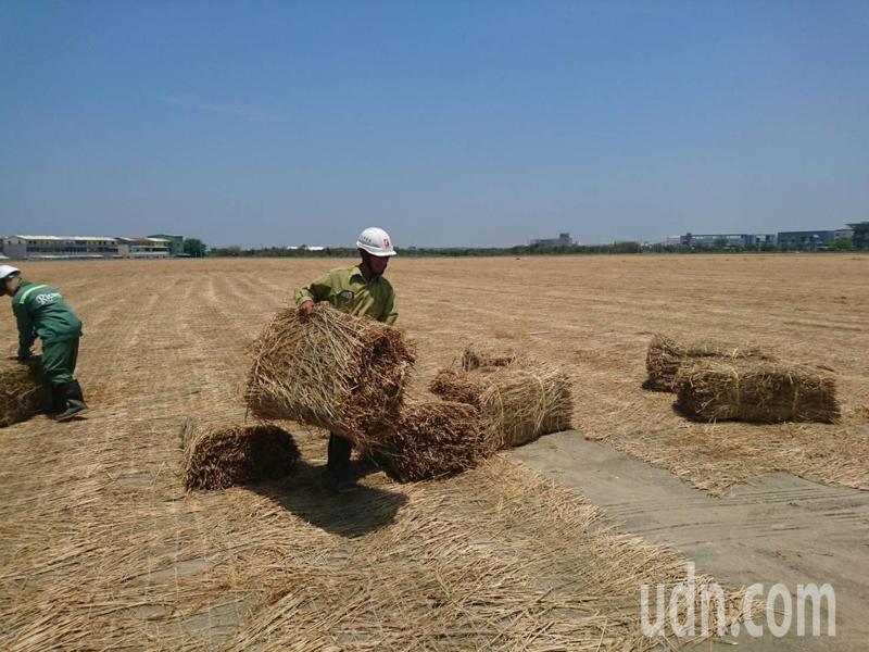 台南市去年藍天比例首度破8成,稻草覆蓋裸露地是辦法之一。圖/本報資料照片