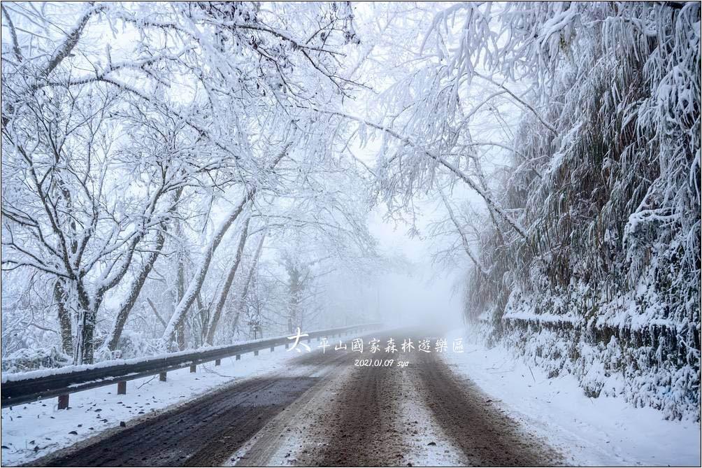 原來賞雪也是有些訣竅的! 太平山國家森林遊樂區裡的冰雪奇緣