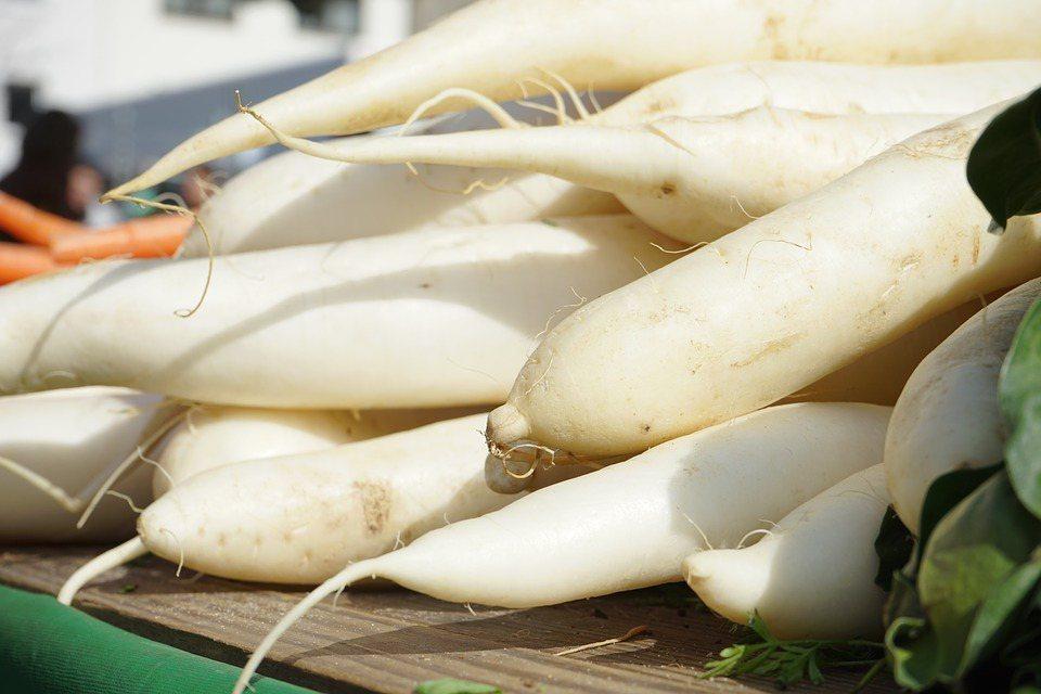 時序轉涼,秋冬進補的食材首選。蘿蔔全身都是寶,營養價值高。 圖/pixabay