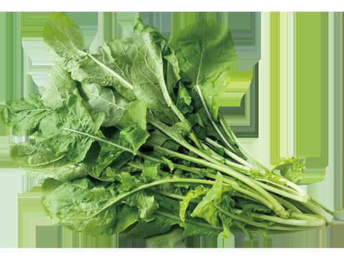 因為有著濃厚芝麻香氣的火箭生菜,又名芝麻菜,屬於十字花科蔬菜。 圖/張季禹 攝影
