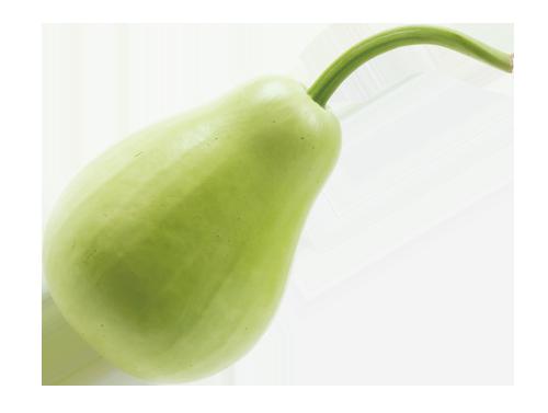 口感柔軟,營養豐富,是夏季美味又能消水腫的瓜類蔬菜。 圖/張季禹 攝影