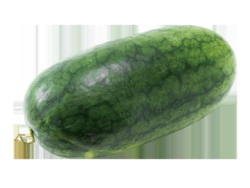果型長橢圓,果皮黑綠有光澤、西瓜條斑不明顯。果肉細緻甜度高,汁多味美香氣足。 圖...