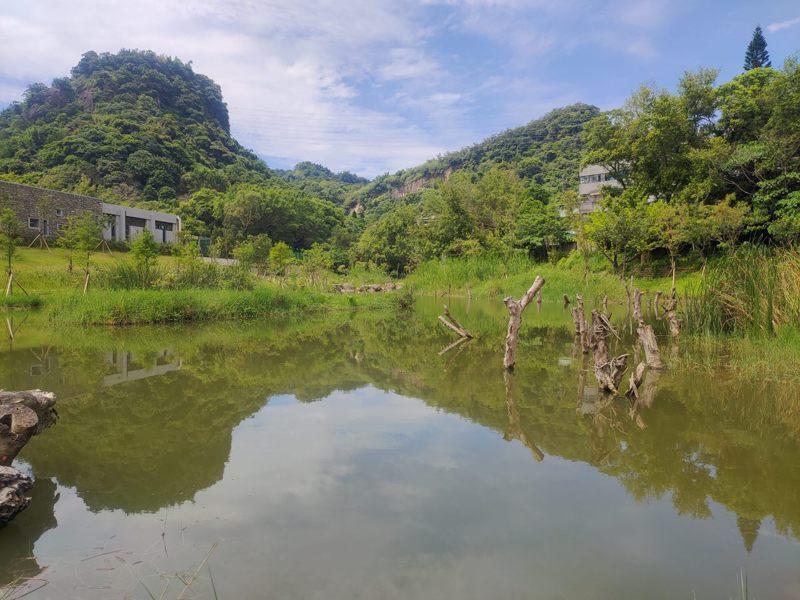 「永春陂濕地公園」是北市信義區第一個都會型濕地公園。圖/台北市政府工務局大地工程處提供