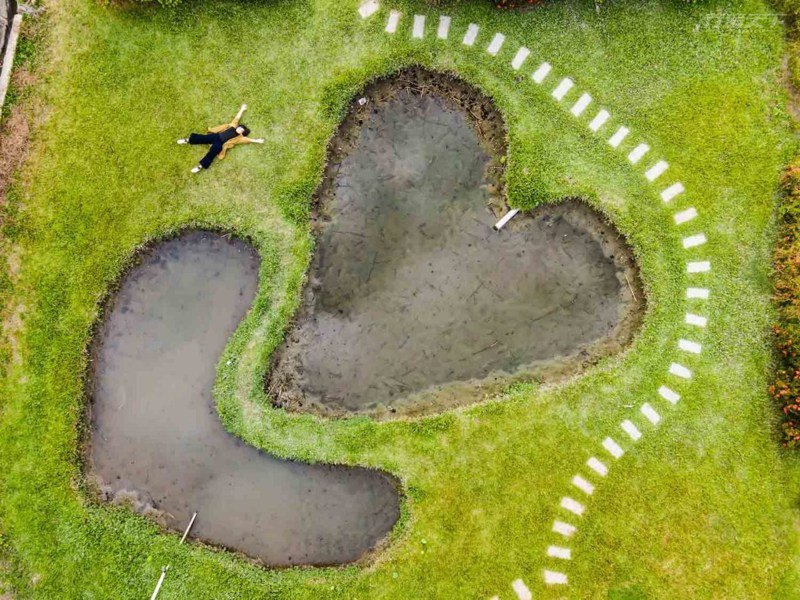 童心滿滿的雙心池塘草地鬆軟讓人忍不住一秒躺下來放鬆身心。(網友提供)