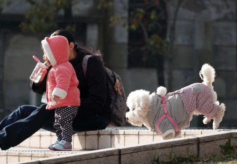 民間氣象平台「台灣颱風論壇|天氣特急」說,北極冷空氣快要暫時離開我們,台灣將迎來「相對不寒冷」的時期,至少持續到一月結束為止。聯合報系資料照