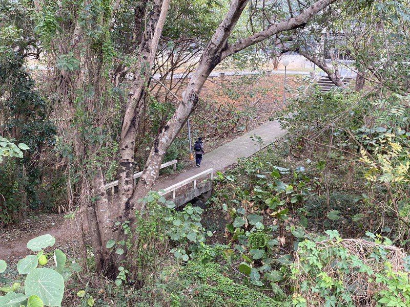 傳說中的東海大學「女鬼橋」是一座無名石橋。記者喻文玟/攝影