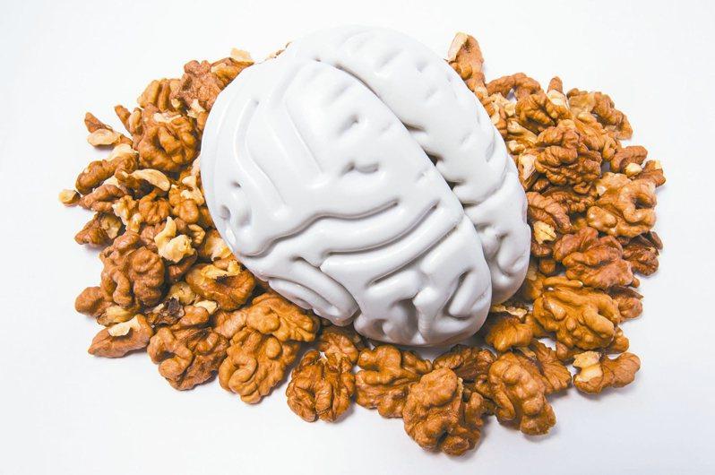 核桃富含單元不飽和脂肪酸,是護腦的重要成分,因此核桃是預防失智的聖品。 圖╱123RF