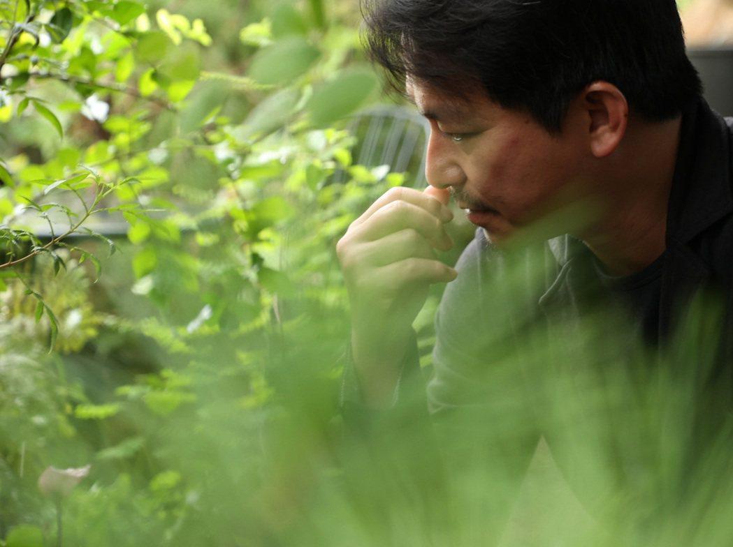 吳書原出身農學院,對植物如數家珍。記者林澔一/攝影