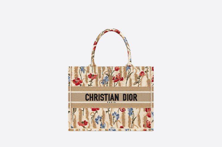 小尺寸Dior Book Tote輕便袋,10萬5,000元。圖/取自DIOR官...