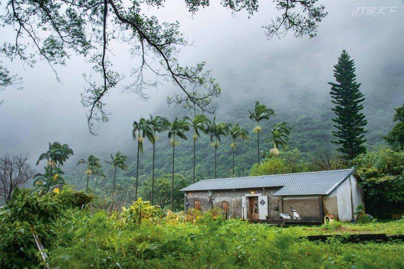 上山來週末限定的老石屋咖啡吧坐坐,一起享受安靜山林裡的仙氣悠悠。