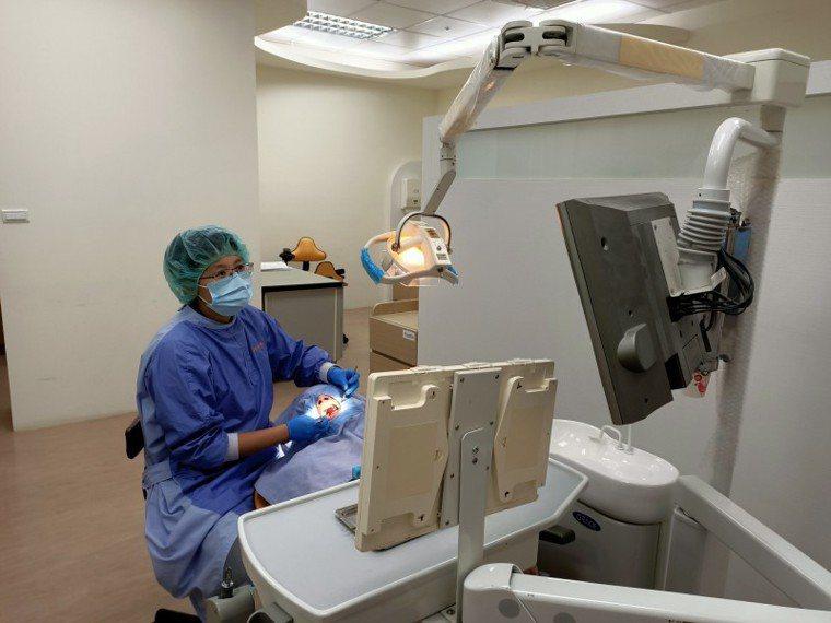 榮總新竹分院牙科醫師王薏雯指出,老翁假牙清潔狀況不佳,導致口腔念珠菌感染。圖/榮...