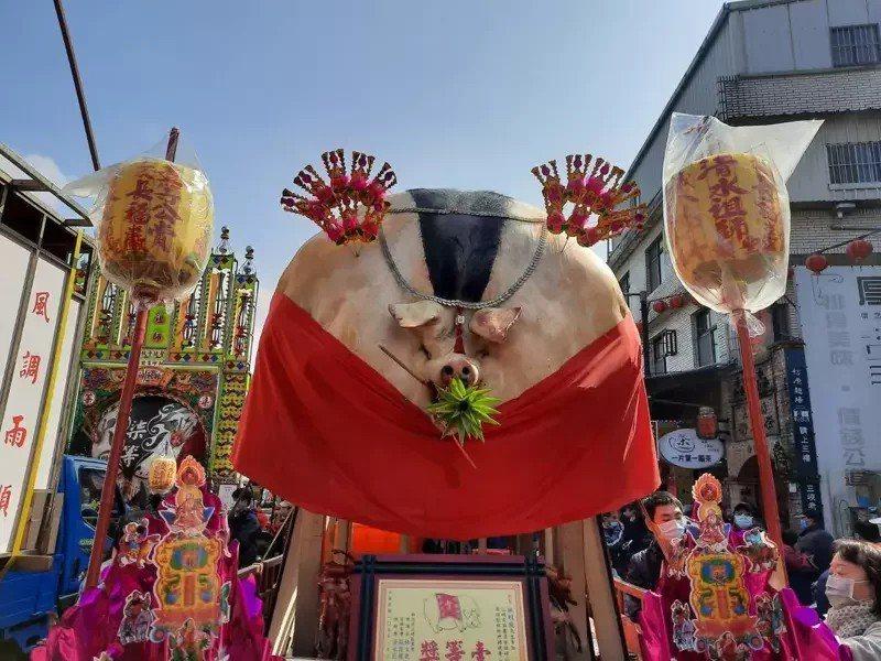 新北三峽清水祖師廟今表示,每年農曆正月初六舉辦的「賽豬公」今年取消。圖/廟方提供