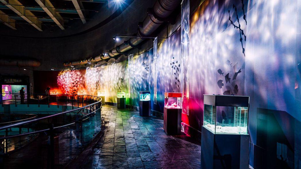 屏東海生館新推出的「色水廊道」。  屏東海生館/提供