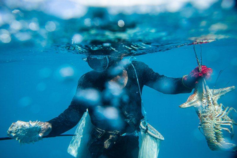 尼加拉瓜卡貝薩斯港漁民,以簡陋工具潛水後,抓著龍蝦、海參、海星,準備上岸。圖/紐約時報